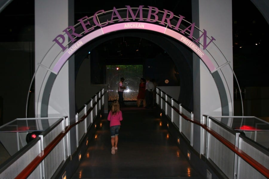 drumheller museum, dinosaur museum, royal tyrrell museum, drumheller alberta, drumheller