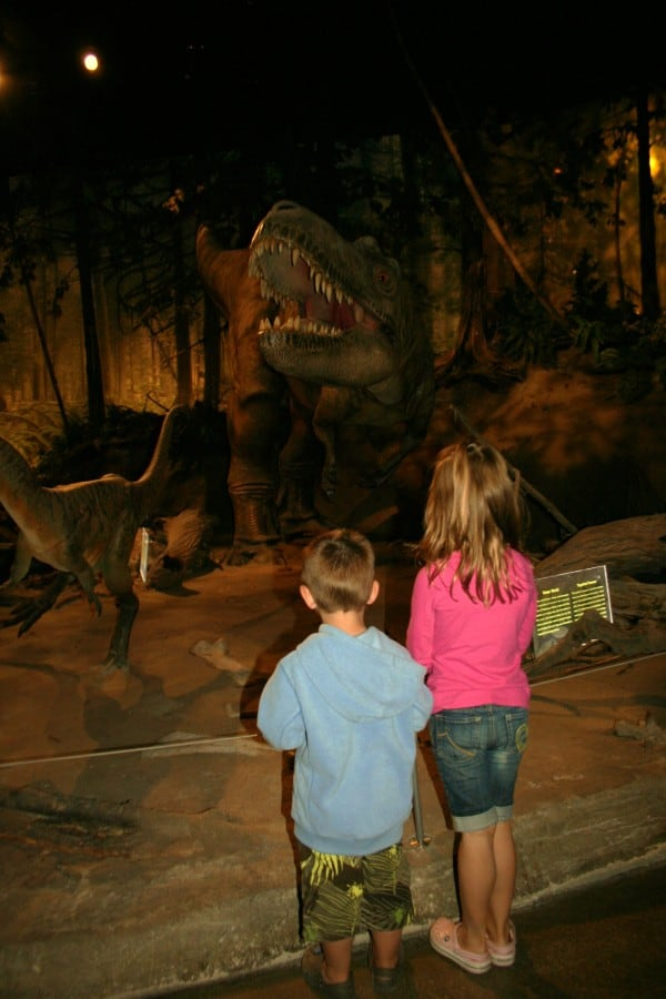 drumheller museum, dinosaur museum, drumheller alberta, drumheller, royal tyrrell museum, royal tyrrell