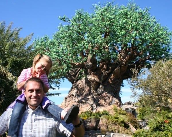 animal kingdom, tree of life, walt disney world