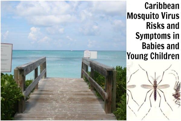 caribbean mosquito virus, zika in babies, malaria in babies, chikungunya in babies, dengue in babies, caribbean mosquito virus risks